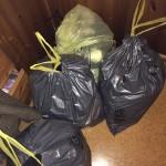 Mülltüten Tag 1